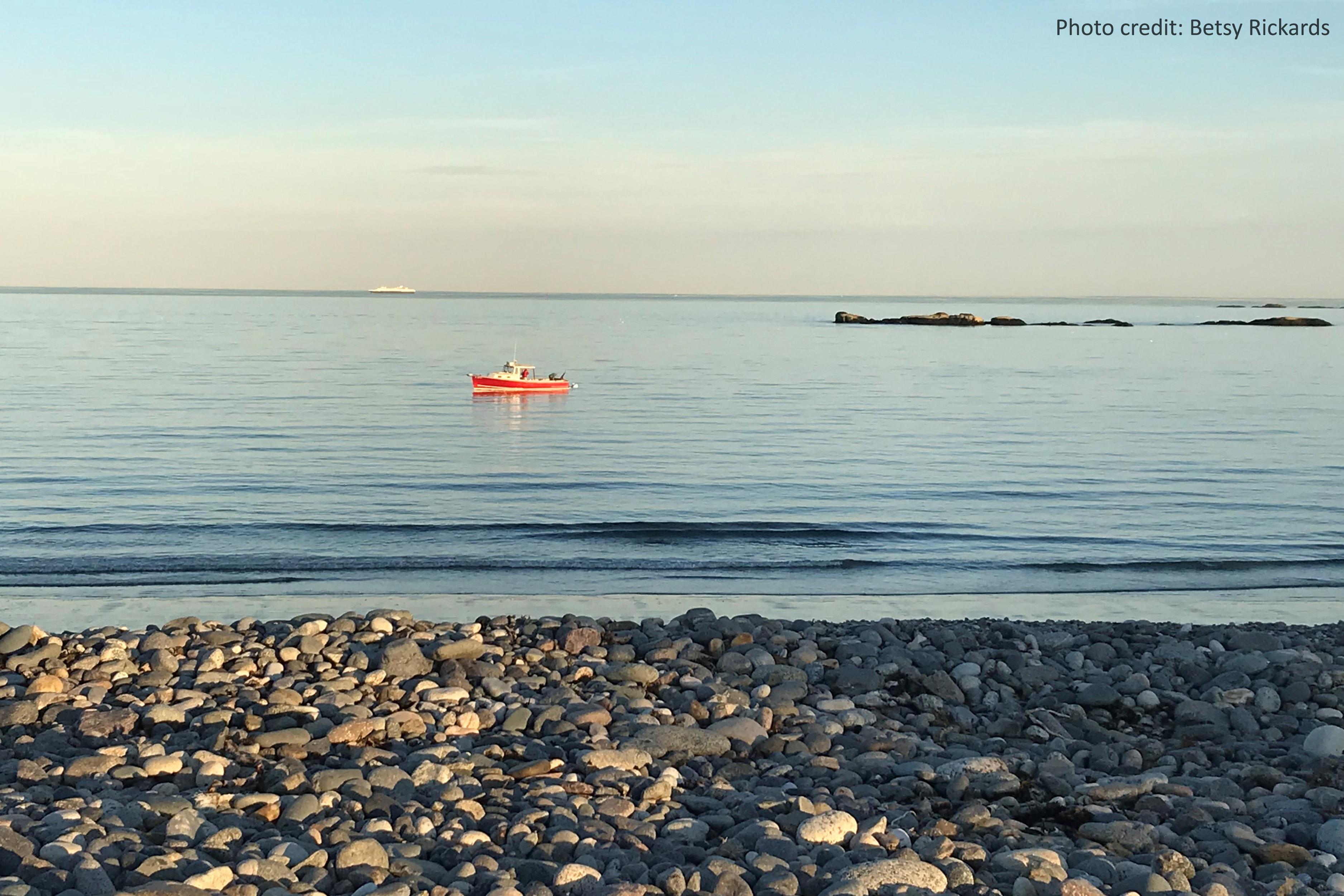 A lobster at sunset off of Goldthwait Beach, Marblehead, Massachusetts