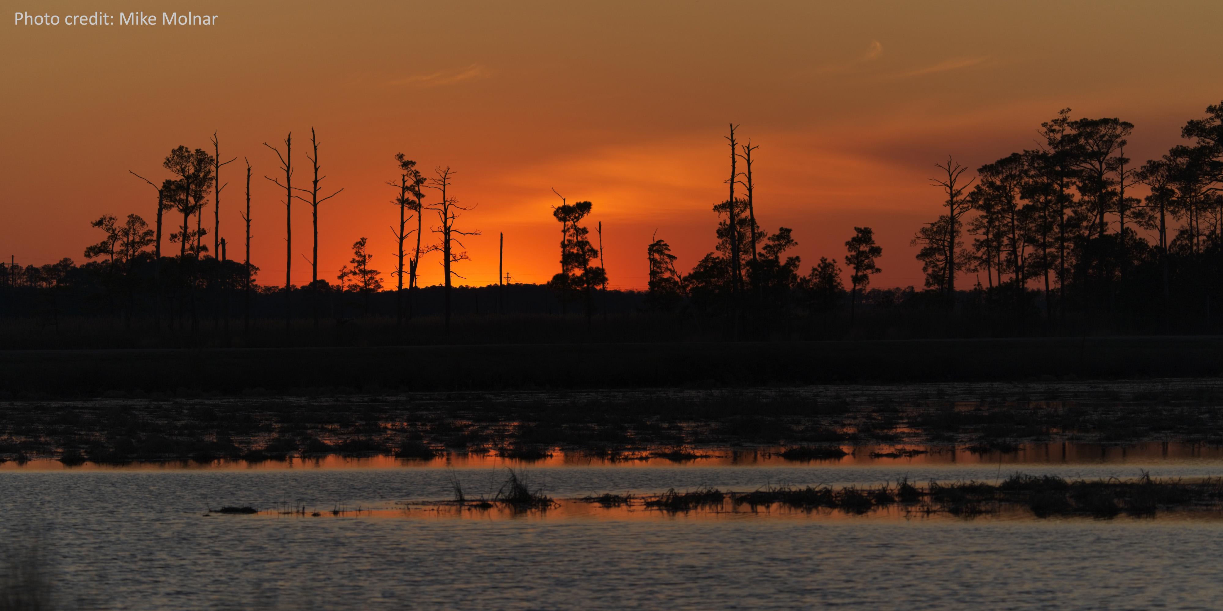 Sunset over Blackwater National Wildlife Refuge