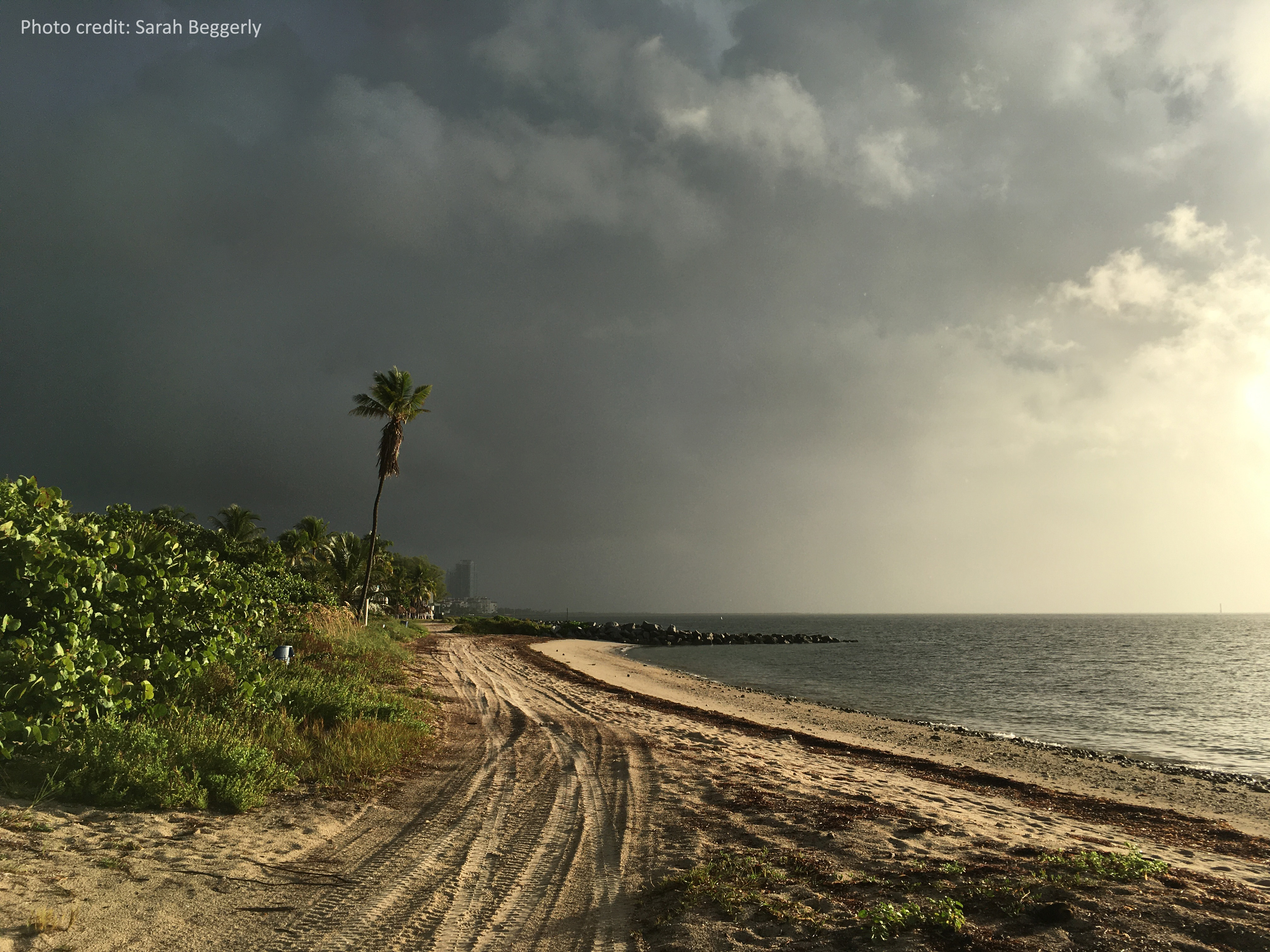 Incoming coastal storm at Virginia Key Beach, Miami, Florida