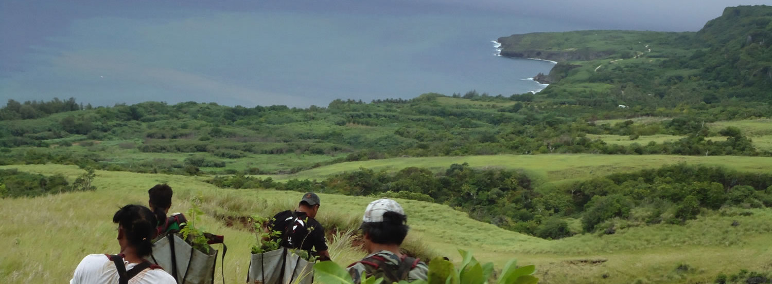 Restoring Talakhaya Watershed in the Commonwealth of the Northern Mariana Islands