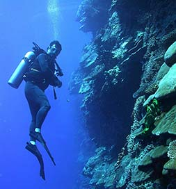 A diver in the reefs of American Samoa