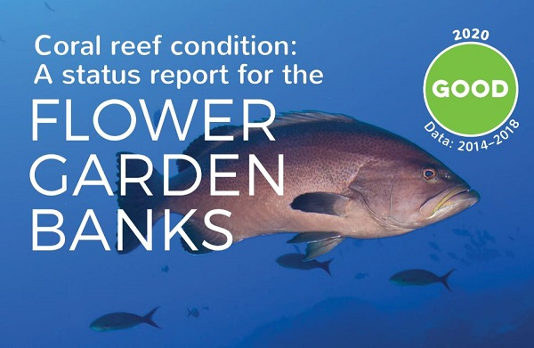 Coral reef condition A status reports for the Flower Garden Banks