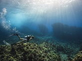 A woman scuba dives atop a coral reef in the tropical waters of Kona, Hawaiʻi.