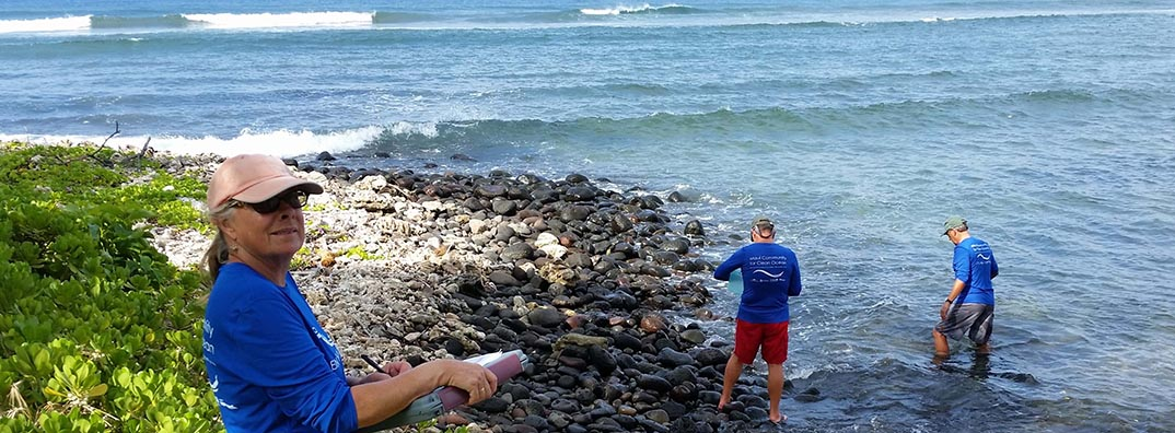 Citizen-Based Water Quality Monitoring in the Hawaiian Islands