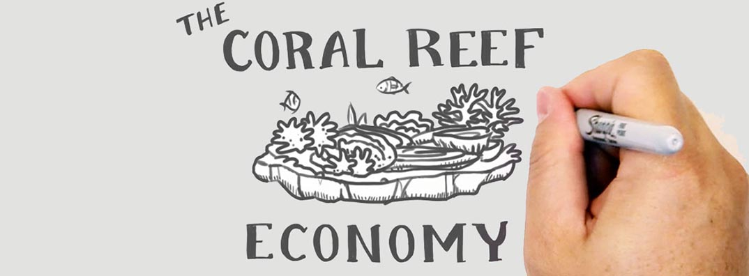 Video: The Coral Reef Economy is Bigger Than You Think