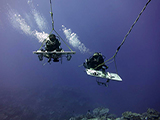 Paired tow divers Andrew Gray and Hatsue Bailey are able to conduct both reef fish surveys & benthic assessments side by side over more than 2 km each dive along nearshore reef habitats.  Credit: NOAA