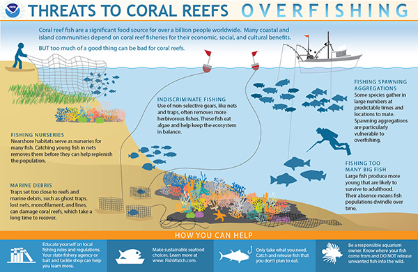 Noaa S Coral Reef Conservation Program Crcp