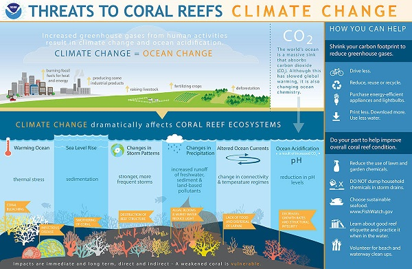 Threats to Coral Reefs: Climate Chang