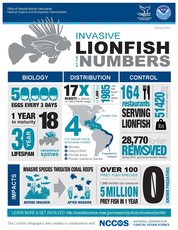 Lionfish by the numbers