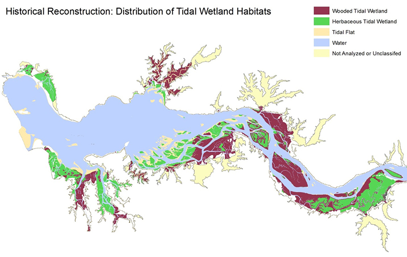 C-CAP High-Resolution Land Cover showing the historical reconstruction of tidal wetland habitats in the lower Columbia Estuary