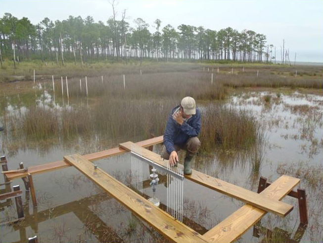 Sea Level Rise Inundation data collected from surface elevation table at Grand Bay National Estuarine Research Reserve
