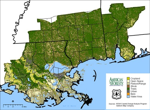 C-CAP Land Cover Atlas shows regional view of land cover for the 48 counties of New Orleans, Louisiana