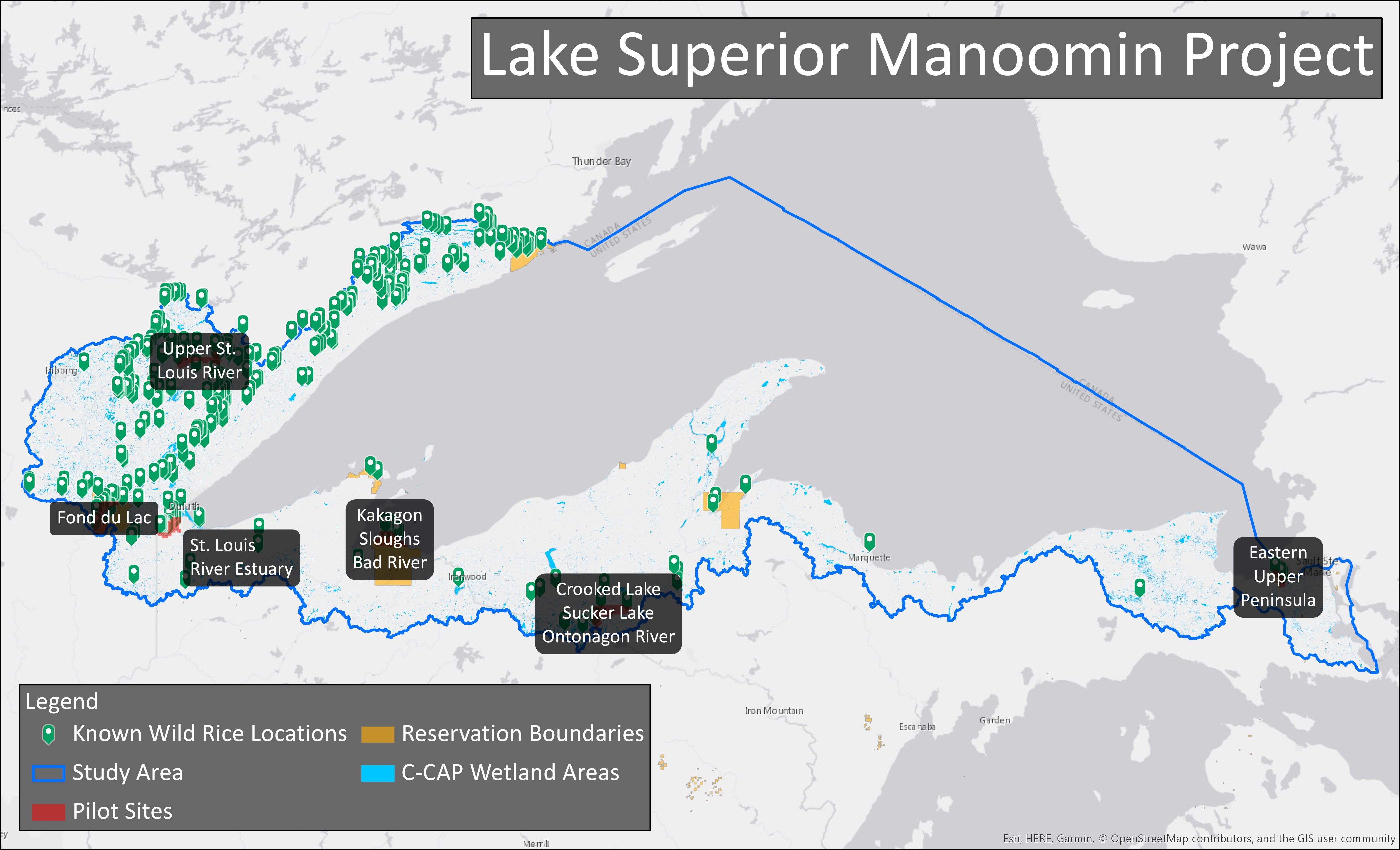 C-CAP Regional Land Cover and Change showing wild rice locations around Lake Superior