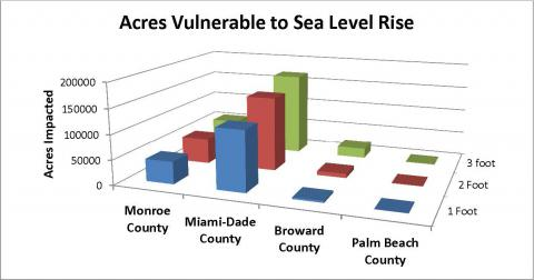 The Sea Level Rise Viewer and the VDatum surface data revealed that Monroe, Miami-Dade, Broward, and Palm Beach counties are vulnerable to inundation