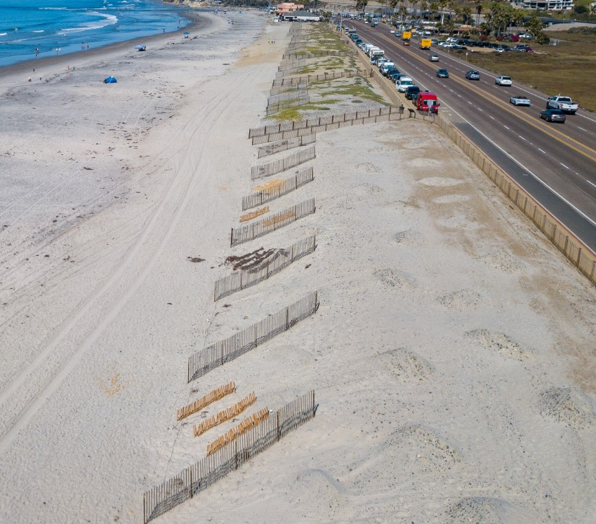 image of dune restoration