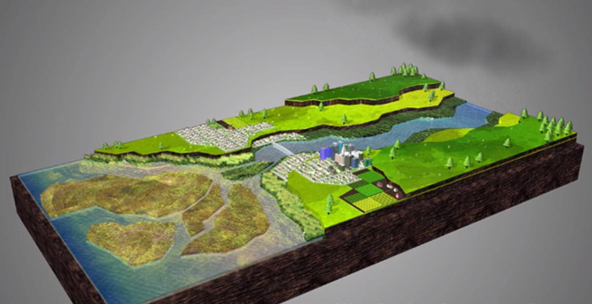Screenshot of Estuaries: Nature's Water Filters Video