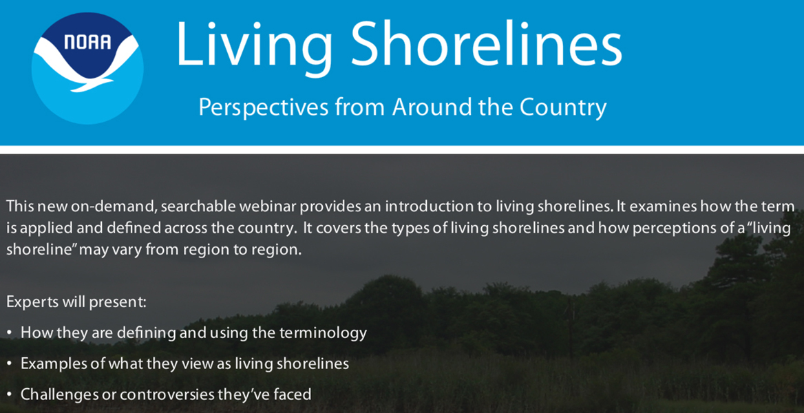 Screenshot of Living Shorelines: Bringing Together Science, Restoration, and Management on Our Nation's Coasts Video