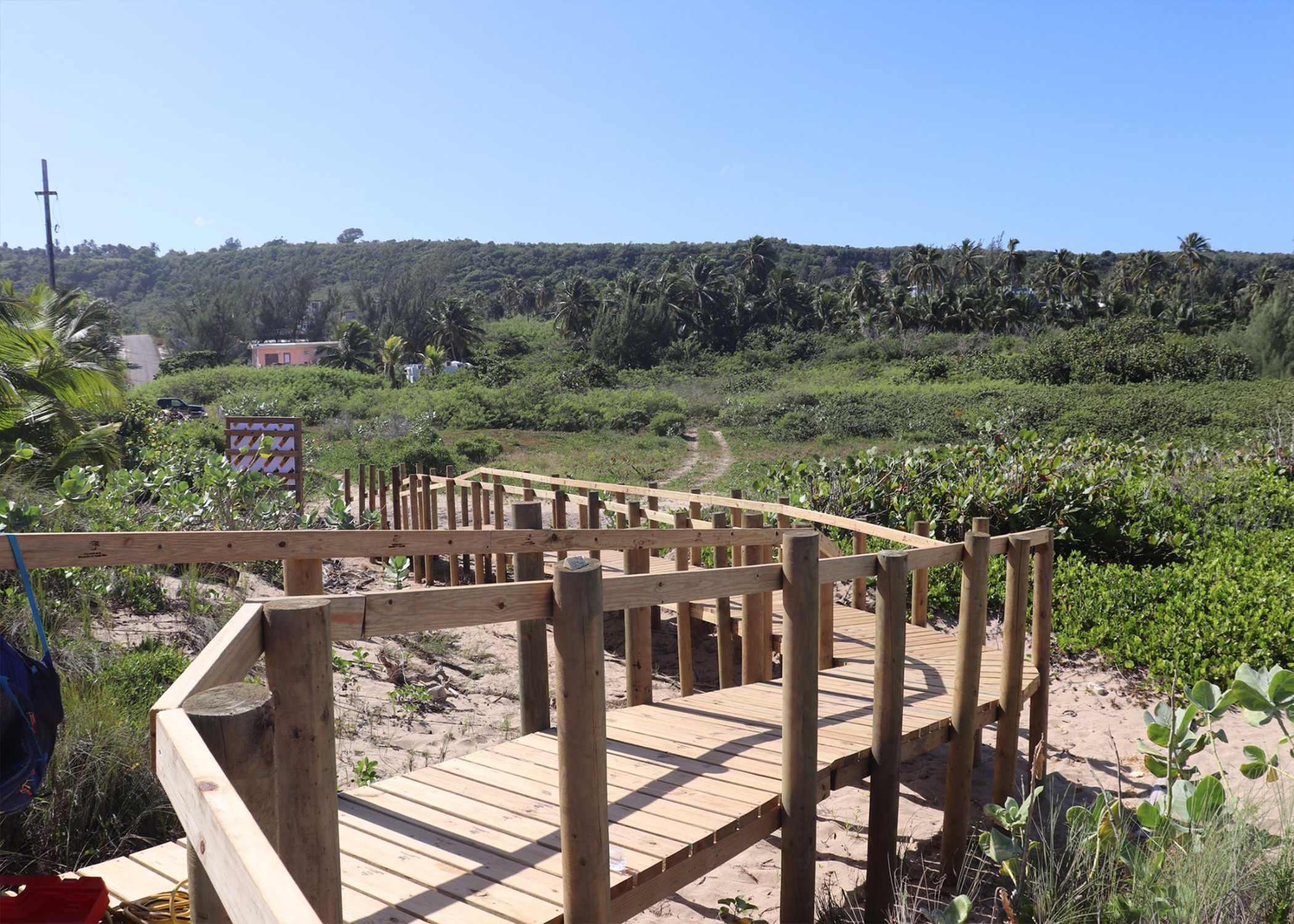 Wooden boardwalk redirects foot traffic to protect coastal dunes as an ecological restoration strategy in Puerto Rico.