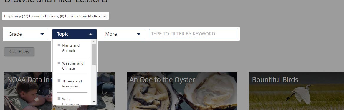 Screenshot of site filters