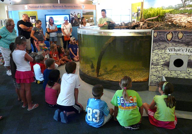 Children listening to a speaker at a National Estuarine Research Reserve Site