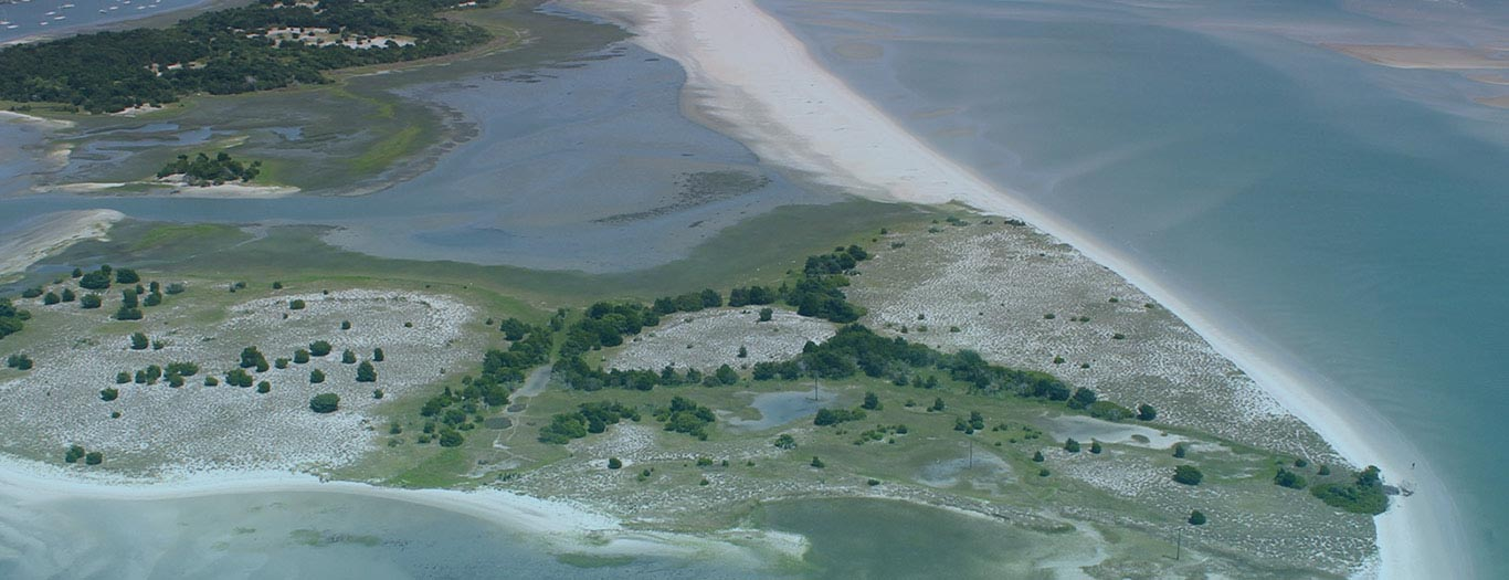 Aerial view of an estuary