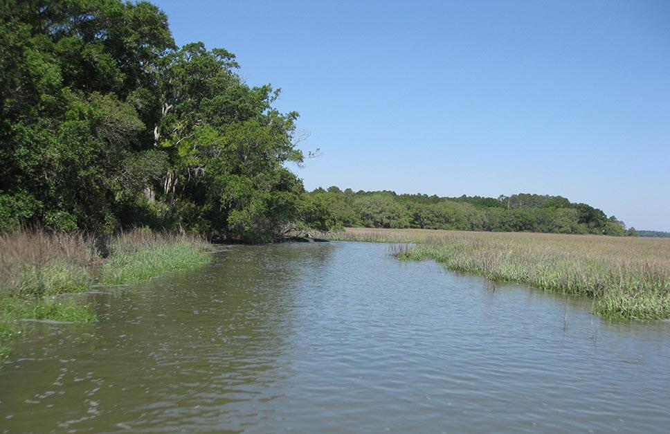 Landscape photograph of estuary in South Carolina