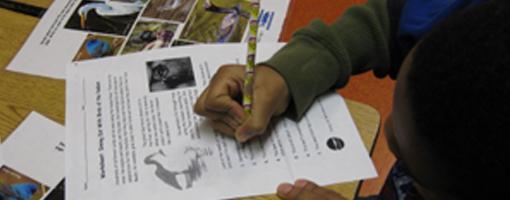 Image for lesson Hudson River Reading Lessons