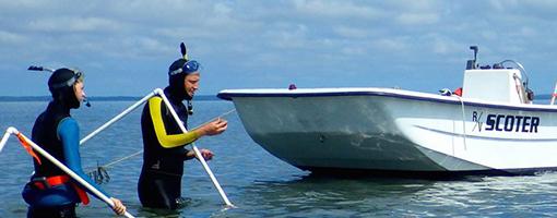 Estuary Curriculum and Classroom Activities