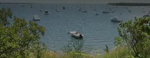 Screenshot of video All About Waquoit Bay Estuary
