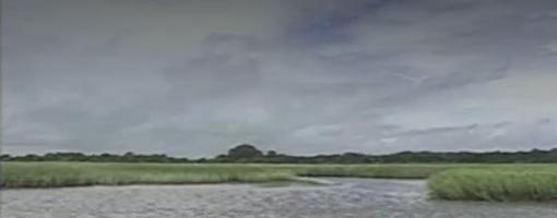 Screenshot of video Building A Salt Marsh