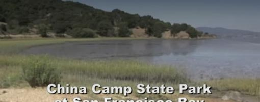Screenshot of video China Camp State Park