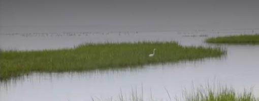 Screenshot of video Galveston Bay Overview