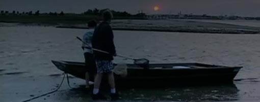 Screenshot of video Night in the Estuary