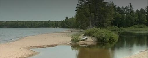 Screenshot of video Sand River Estuary