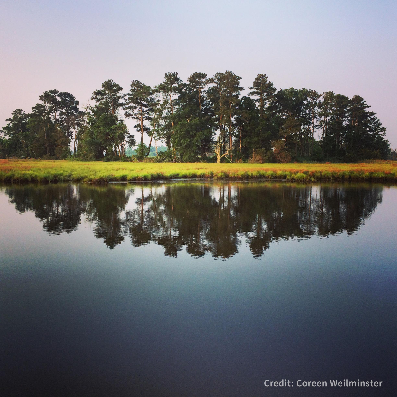 CBNERR-MD_CalmWaters_CoreenWeilminster_credit.jpg