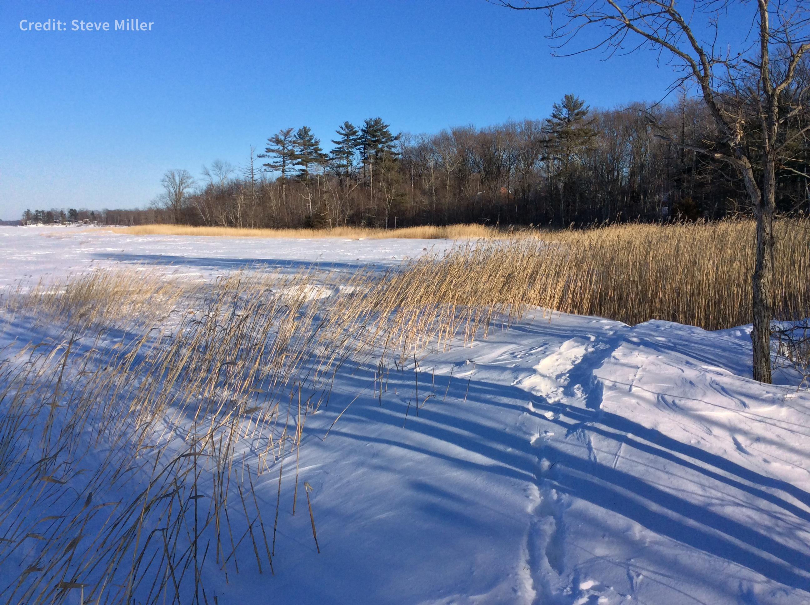 GreatBayNERR_snowy-boardwalk_SteveMiller_credit.jpg