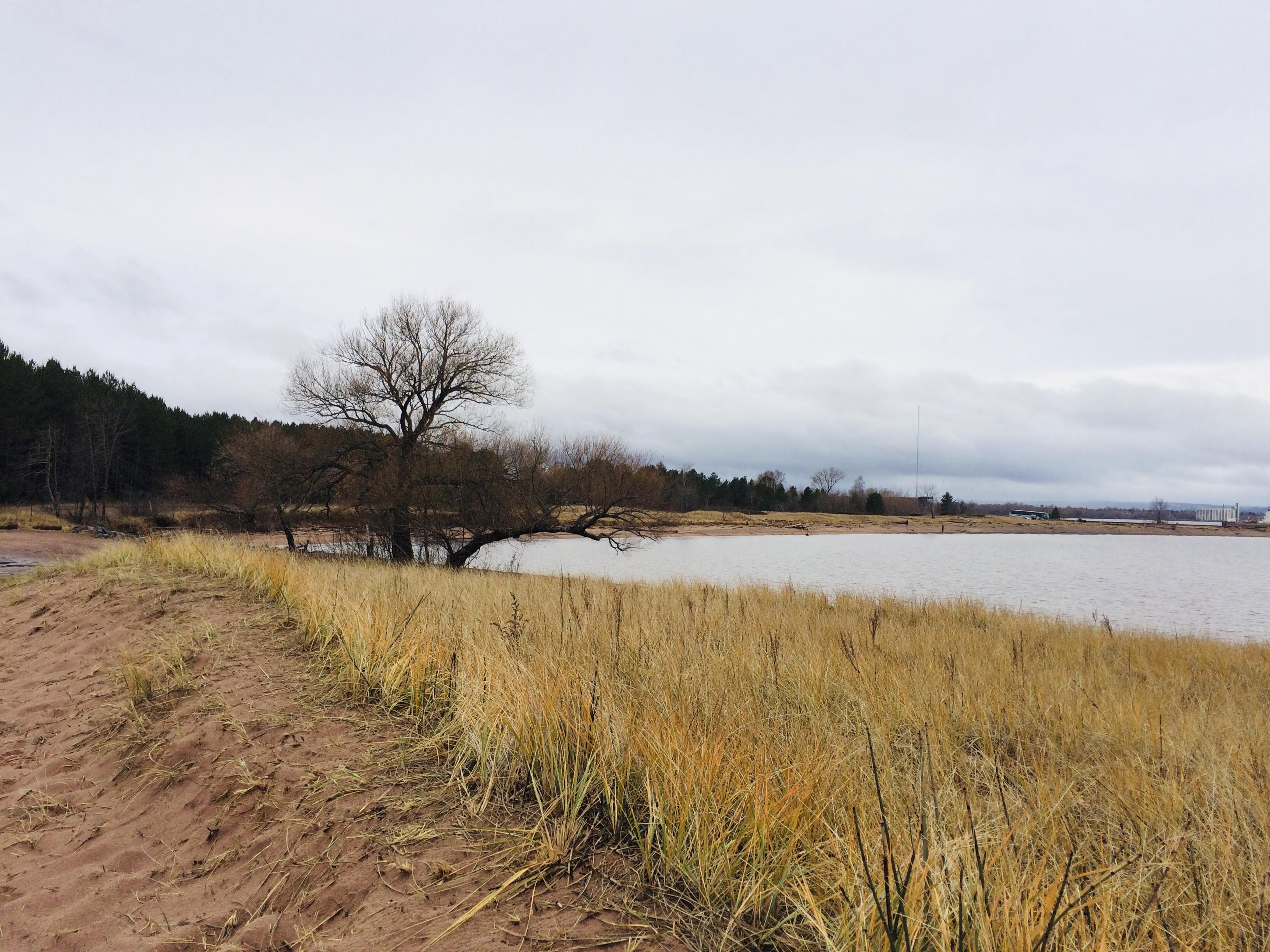 LakeSuperiorNERR_WIPoint3.jpg