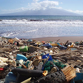Marine debris on Hawaiian beach