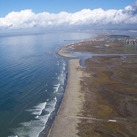 Coastal shoreline