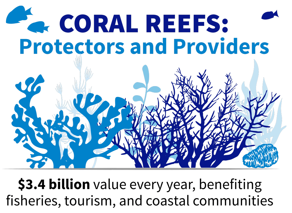 CORAL REEFS: Protectors and Providers $3.4 billion value every year, benefiting fisheries, tourism, and coastal communities