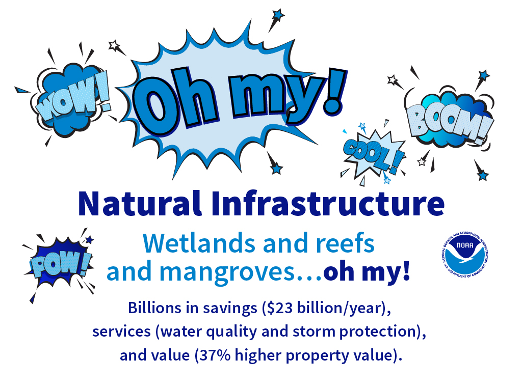 Natural Infrastructure graphic