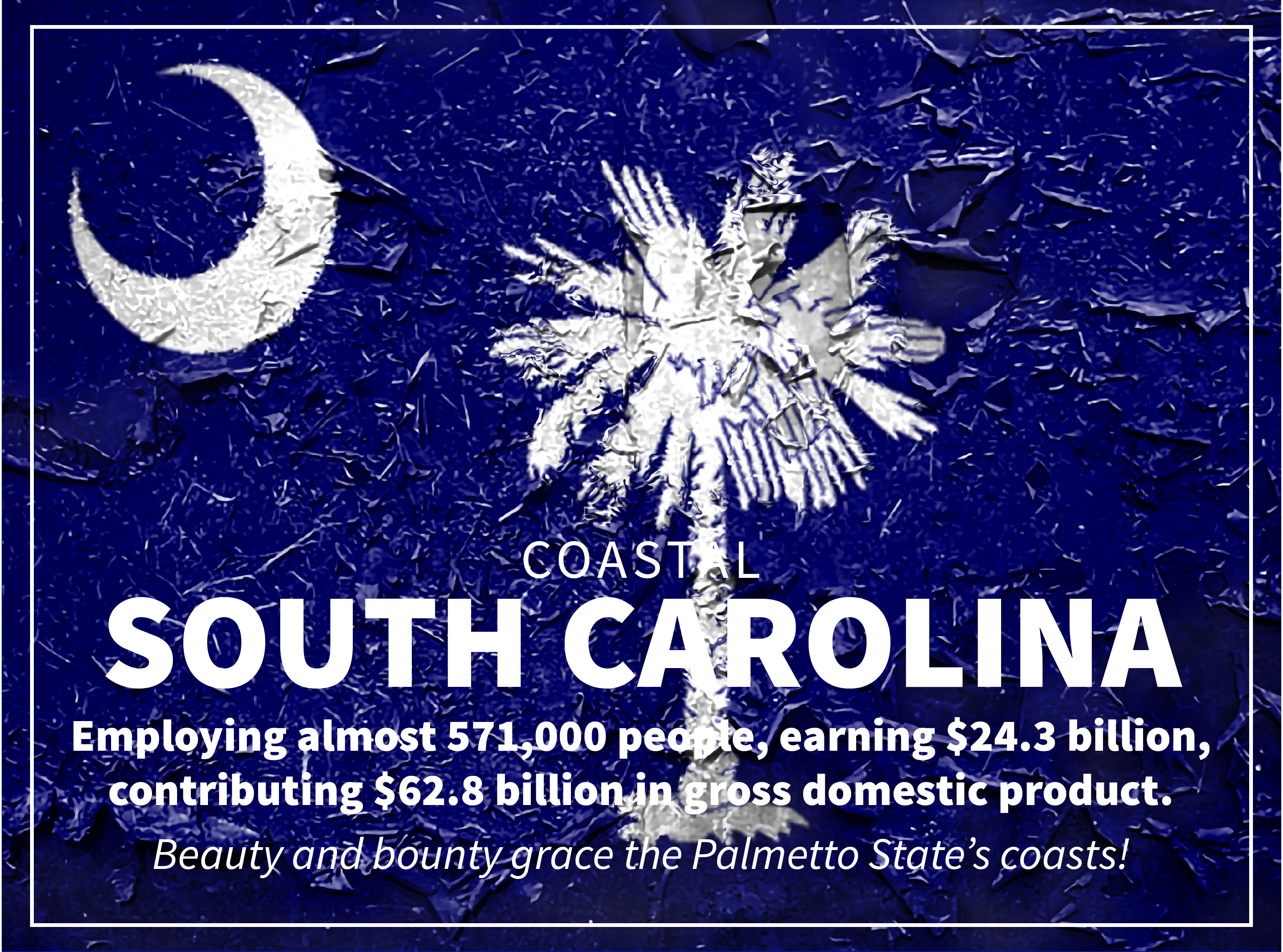 South Carolina graphic