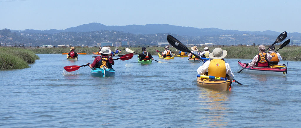 Kayakers paddle the San Francisco Bay Area Water Trail from Redwood City to the Bay