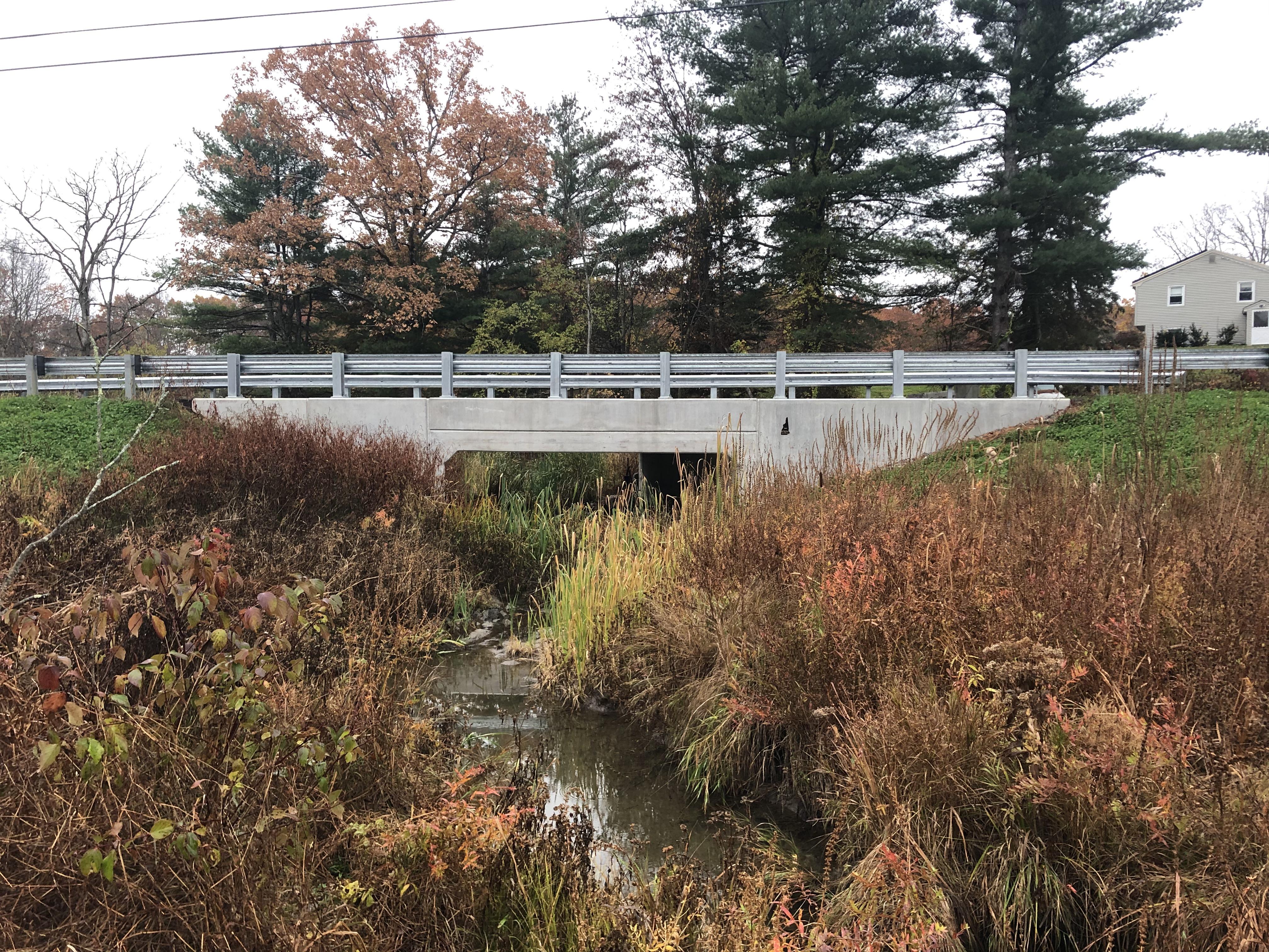 New concrete bridge spanning over a small stream. Tall grasses surround the stream.