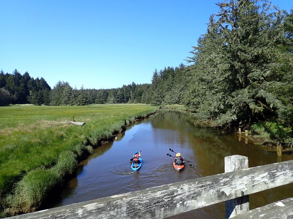 Kayakers paddling down a river.